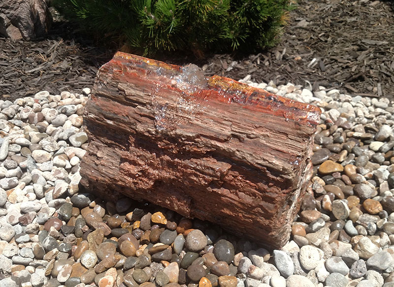 Petrified Wood 3b
