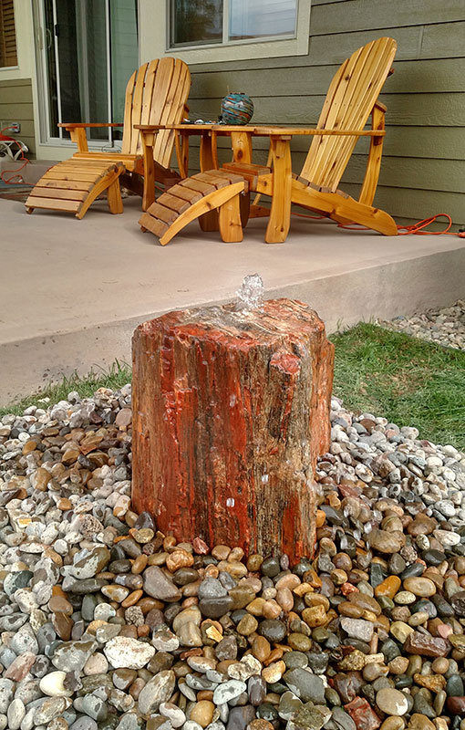 Petrified Wood 4