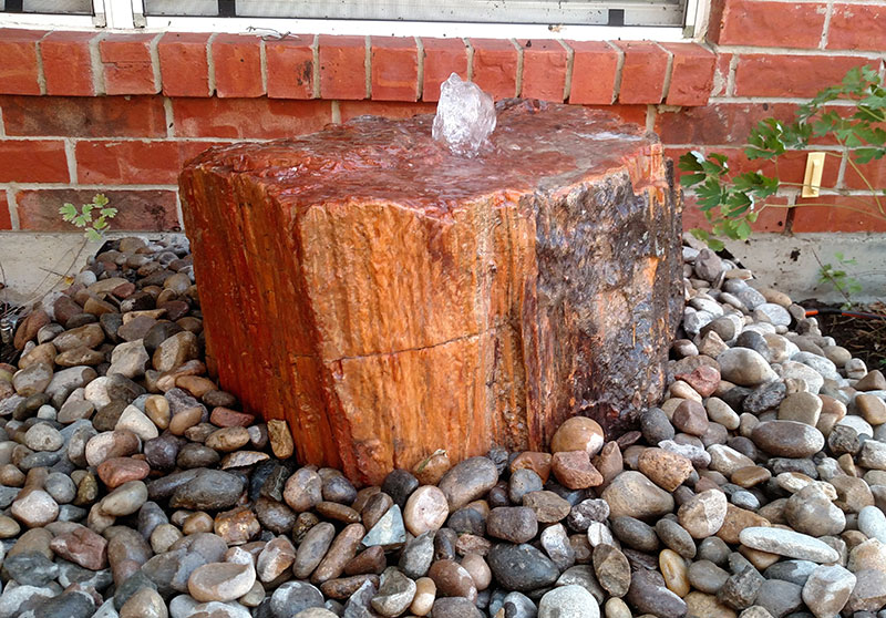 Petrified Wood 10