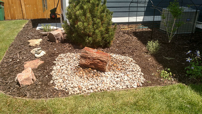 28.-Backyard-Petrified-Wood