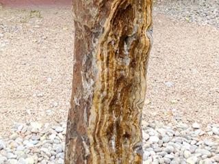 8b. Brown Canyon Onyx, natural face
