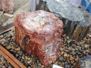 1. Red Petrified Wood