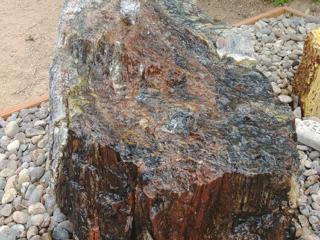 """Black Petrified Wood, 30"""" x 22"""" x 23"""" tall"""